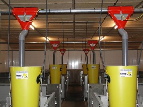 KANPLAN社製養豚業向けドライフーディング給餌システム