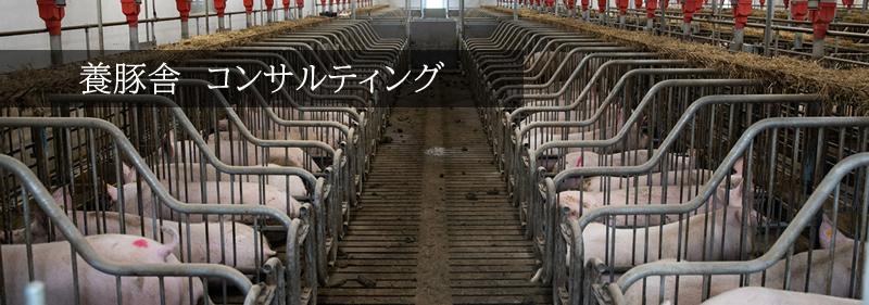 養豚場設計コンサルティング